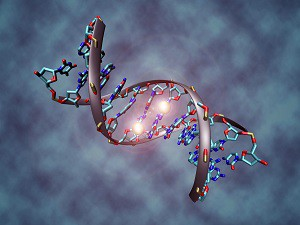 DNA_methylation-300x225